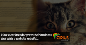 [Marketing Case Study] How These Main Coon Breeders Grew Their Business Using Our Customer Value Optimization Strategies